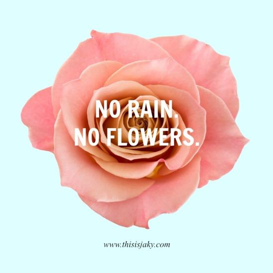 No rain no flowers.jpg