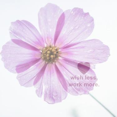 Wish Less Work More Square.jpg
