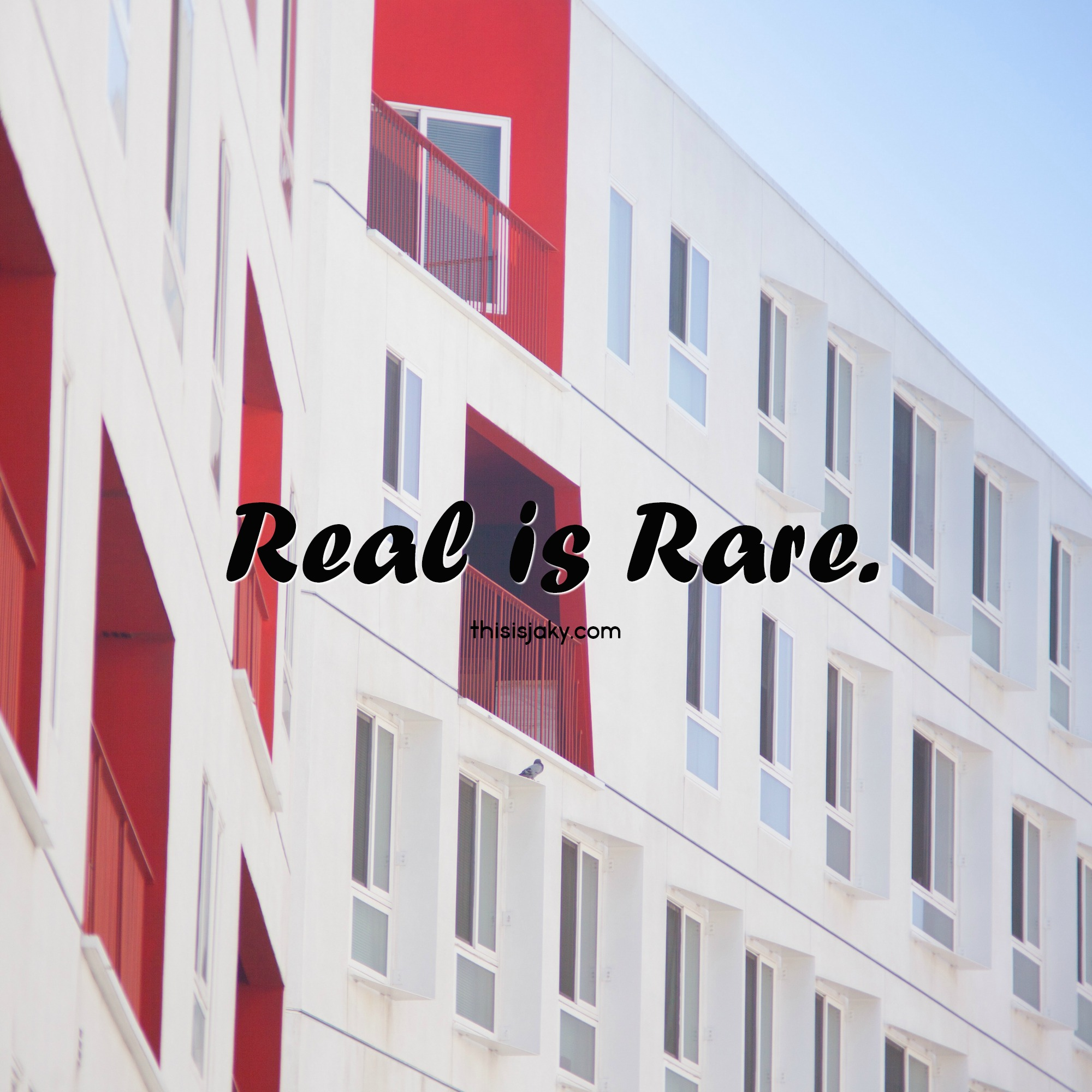 real is rare.jpg