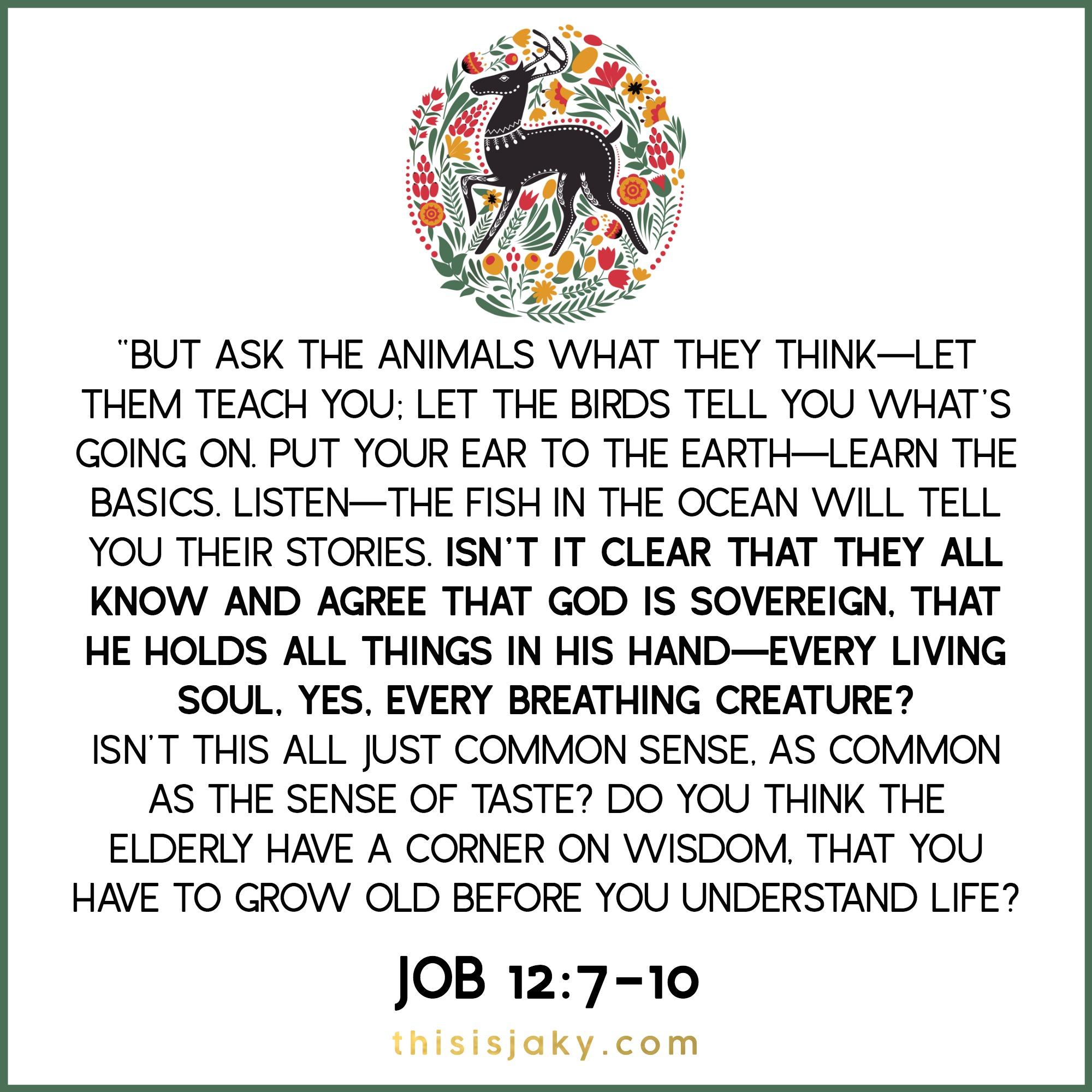 job 127-10.jpg